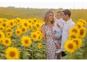 幸福的年轻家庭母亲父亲和儿子在向日_9409627