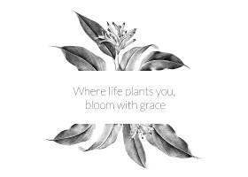 热带植物横幅插图_3849667