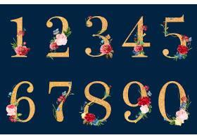 植物学数字与热带花卉插图_3226556