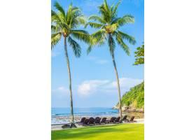 美丽的热带椰子树带椅子环绕海滩大海_11408936