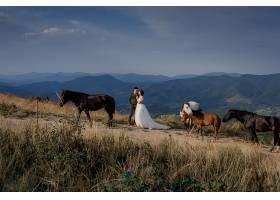 阳光明媚的山间新婚夫妇被马包围的田园诗_7497107