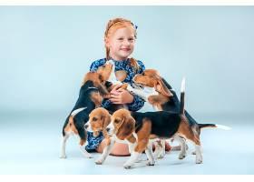 灰色墙上的快乐女孩和小猎犬_8821769
