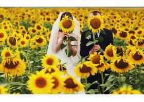 新娘和新郎把脸藏在黄色的向日葵后面_1621907