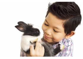 亚洲孩子与可爱的小兔子玩耍隔离在白色上_3805899