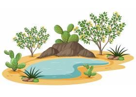 野生沙漠中的杂酚油灌木植物_12337308