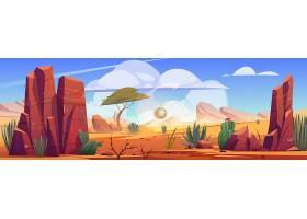 非洲沙漠的自然景观风滚草沿着炎热干燥_11049551