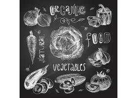 蔬菜素描套装黑板_3924700