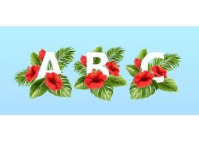 被夏天的热带树叶和红色的芙蓉花围绕着的a_13278691