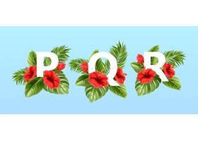 被夏天的热带树叶和红色的芙蓉花围绕着的pq_13278683