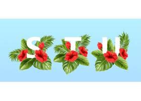 被夏日的热带树叶和红色的芙蓉花包围的字母_13278681