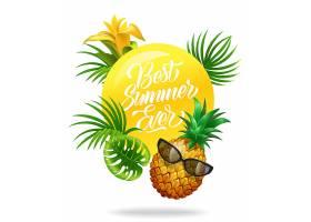 用热带树叶鲜花菠萝和太阳镜制作的最棒_2538708
