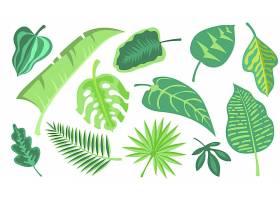 绿色异国情调的叶子扁平插图套装卡通怪兽_10613011