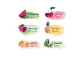 漂亮的水彩水果标签_1170782