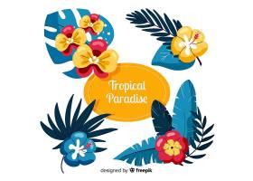 热带树叶和花朵_4343538