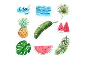 热带植物水彩创意元素设计矢量插图_5589374