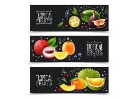 热带水果横幅_6204227