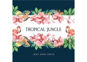 热带边框夏季配以植物的异国风情创意水彩_4950988