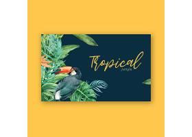 热带边框夏季配以植物的异国风情创意水彩_4950991