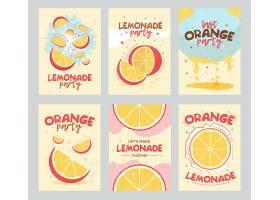 柠檬水派对海报和卡片设计橙子水果_11236153