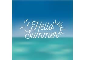 模糊的你好夏天抽象的太阳和海鸥_7708782