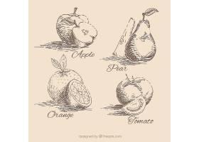 手绘水果收藏_893080