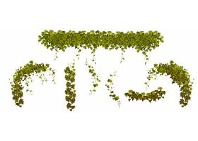 常春藤攀缘植物绿叶镶嵌_13327398