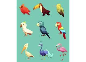 异国情调的热带鸟类复古图标集_3791072