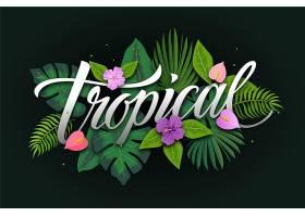 带树叶的热带字母_7971076