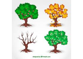 季节性树木_801667