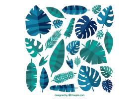可爱的热带叶子系列平面设计_2699114
