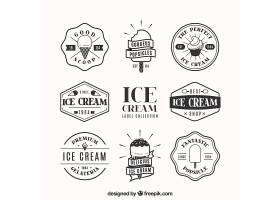 一包装饰徽章内有扁平设计的冰激凌_1137803