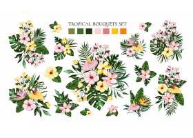 一套热带异国情调的花束带有鸡蛋花芙蓉_5042237