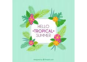 你好热带夏季背景_1137922