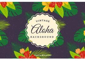 Aloha复古背景带鲜花_1161098