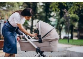 年轻的母亲推着婴儿车在公园里散步_10298553