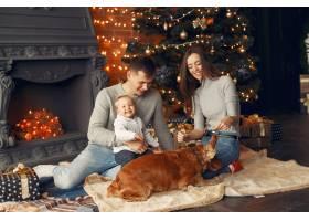 一家人在圣诞树附近的家里养着可爱的狗_11242652