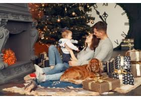 一家人在圣诞树附近的家里养着可爱的狗_11242681