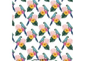 鸟语花香的热带夏季模式_2211519