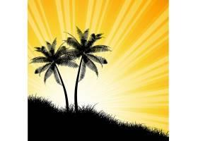 阳光明媚的天空映衬着棕榈树的剪影_1124059