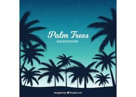 美丽的棕榈树景观背光_1112709