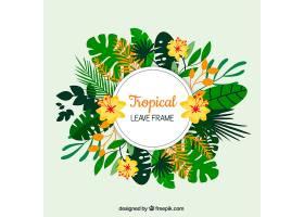美丽的热带叶架_2224986