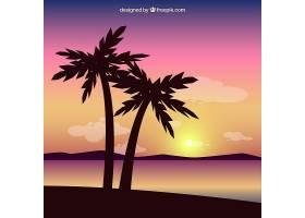 背景色彩斑斓的棕榈树_922768
