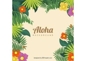 热带自然的ALOHA背景_1252770