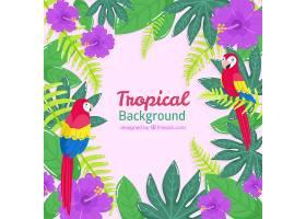 热带夏季背景有鸟类和植物_2200179