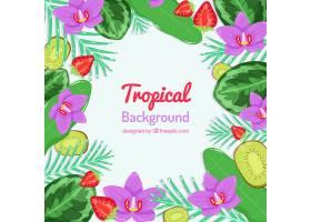 热带夏季背景植物和水果_2200181