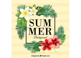 热带夏季花卉背景_1140457