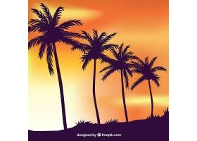 热带夏日背景棕榈树的剪影_2235596