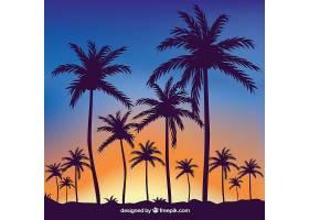 热带夏日背景棕榈树的剪影_2235598