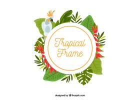 热带树叶和鸟的框架_2225005