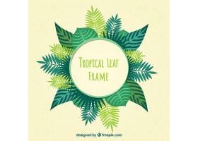 热带树叶的创意框架_2225004